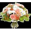 Autumn flowers - Rośliny -