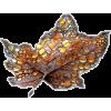 Autumn leaf - Illustrazioni -
