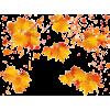 Autumn leafs - Illustrazioni -