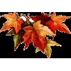 Autumn leafs - イラスト -