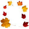 Autumn leafs - Illustraciones -