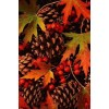 Autumn leaves - Nature -