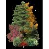 Autumn tree - Natural -