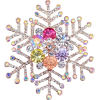 Awesome snow flake - Illustrazioni -