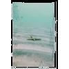 Beach Polaroid - Items -