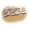 Beach - Uncategorized -