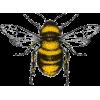Bee illustration - Natureza -