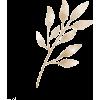 Beige 346 - Pflanzen -