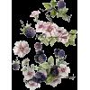Berry Flower - Illustrations -