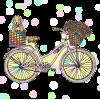 Bike - Other -