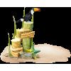 Bird on the wood - Zwierzęta -