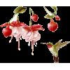 Bird flowers - Ilustrationen -