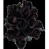 Black Roses - Rastline -