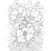 Black & White Floral Background - Illustraciones -
