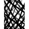 Black & White - Illustrations -
