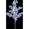Bloom branch - Plantas -