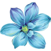 Blue Flower - Plants -