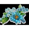 Blue Flowers - Plants -