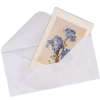 Blue. Mail - Items -