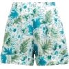 Blue and Green Tropical Shorts - その他 -