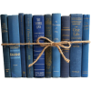 Blue books - Предметы -