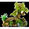 Bonsai - Plantas -