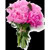 Bouquet Of Flowers - 植物 -