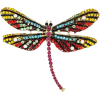 Brooch dragonfly - Illustrations -