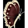 Brown Butterfly - Uncategorized -