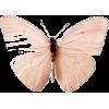 Butterfly - Illustraciones -
