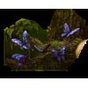 Butterfly - Uncategorized -