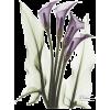 Calla Lily Quad in Color Prints - Plants -