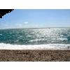 Cape Cod - Natura -