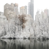 Central Park New York winter photo - Uncategorized -