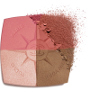 Chanel Blush and Illuminating Powders - Cosmetics -