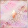 Charlotte Tilbury Glowgasm Face Palette - Background -