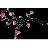 Cherry Blossom Sketch - Uncategorized -