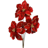 Christmas Flower - Plantas -