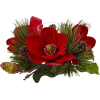 Christmas Flower - Piante -