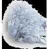 Christmas - Illustrazioni -