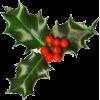 Christmas holly - Articoli -