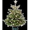 Christmas tree - Ilustracje -