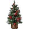 Christmas tree - Plants -