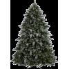Christmas tree - Rastline -