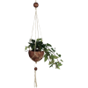 Coconut Makramee Hanging Basket - Pflanzen -