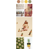 Color Palette - Illustrations -