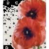 Color Polka Dot - Items -