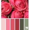 Color - Articoli -