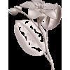 Cvijet - Illustrations -
