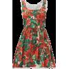 DOLCE & GABBANA Geranium-print cotton mi - Kleider -